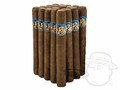 Rosa Cuba Governors Bundle of 20